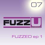 EEEMUS/SEEDY JAZZ/MRDOT - Fuzzed EP (Front Cover)