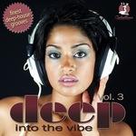 Deep Into The Vibe Vol 3