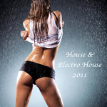VARIOUS - House & Electro House 2011 (Front Cover)