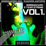 VARIOUS - 5 Year Strong Vol.1 (Front Cover)