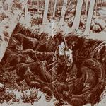 SUNN O))) meets NURSE WITH WOUND - The Iron Soul Of Nothing (Front Cover)