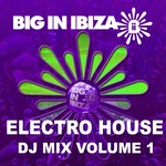 Electro House: DJ Mix Vol 1 (unmixed tracks)
