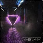 ENTER SHIKARI - Sssnakepit (remixes) (Front Cover)