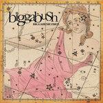 BiggaBush Free