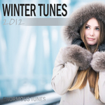 VARIOUS - Winter Tunes 2012 (Front Cover)