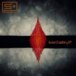 Capillary EP