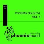 VARIOUS - Phoenix Selecta Vol 1 (Front Cover)