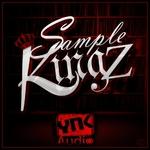 YNK AUDIO - Sample Kingz (Sample Pack WAV) (Front Cover)