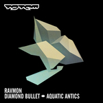 RAVMON - Diamond Bullet (Front Cover)