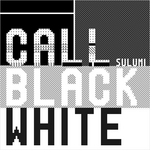 Call Black White (remixes)