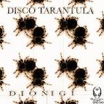 Disco Tarantula