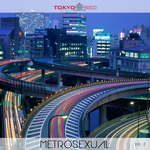 VARIOUS - Metrosexual Vol 2 (Front Cover)