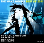 VARIOUS - The Wake Woods Best of 2011 (Back Cover)