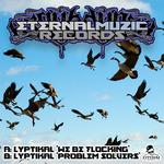 LYPTIKAL - Flocking/Problemsolvers (Front Cover)