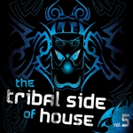 VARIOUS - The Tribal Side Of House Vol 5 (Front Cover)