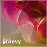 VARIOUS - Deep & Groovy (The Tech House Selection) (Front Cover)