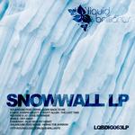SOLARCUBE/LONDY/JOSEPH ABLETT/SCOTT ALLEN/RELEASE/JC/FAIBLE/CHINENSIS - Snowwall LP (Front Cover)