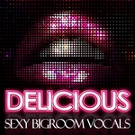 Delicious (Sexy Bigroom Vocals)