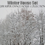 VARIOUS - Winter House Set (2011 Super Dance House Collection) (Front Cover)