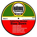 FLATLINE feat WERD2JAH - Slow Down (Front Cover)