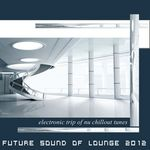 VARIOUS - Future Sound Of Lounge 2012 (Electronic Trip Of Nu Chill Downbeat Ambient Tunes) (Front Cover)