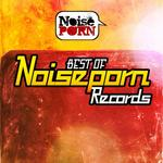 Best Of Noiseporn Records Vol 1