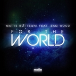 BOTTEGHI, Matte feat SAM WOOD - For The World (Front Cover)
