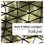 NOON & HAKAN LUDVIGSON - Fortune (Front Cover)