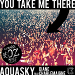 You Take Me There (Wizards Of OZ mixes)