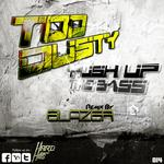 TOO DUSTY/BLAZER - Push Up The Bass (Front Cover)