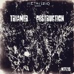 TRIAMER - Destruction (Front Cover)