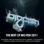 VARIOUS - Best Of Big Fish 2011 (Front Cover)