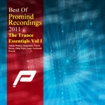 VARIOUS - Best Of Promind Recordings 2011 (Front Cover)