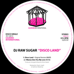 Disco Land