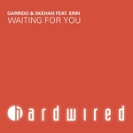 GARRIDO/SKEHAN feat ERIN - Waiting For You (Front Cover)