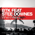 BTK feat STEE DOWNES - What It Means (Front Cover)