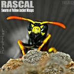 RASCAL - Swarm Of Yellow Jacket Wasps EP (Front Cover)