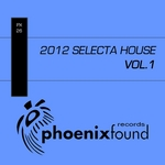 VARIOUS - 2012 Selecta House Vol 1 (Front Cover)