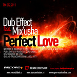 DUB EFFECT feat MIX USHA - Perfect Love (Front Cover)