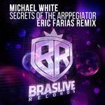 WHITE, Michael - Secrets Of The Arpeggiator (Eric Farias Remix) (Front Cover)