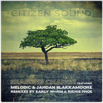 CITIZEN SOUND feat MELODIC/JAHDAN BLAKKAMOORE - Seasons Change (Front Cover)