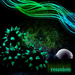 ALLMEADOW/ROB COSTLOW - Reunion (Front Cover)