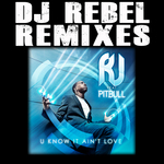 RJ feat PITBULL - You Know It Ain't Love Dj Rebel Remixes (Front Cover)