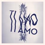 R&R GROOOVE XPRESS - Ti Amo (De La Fonque) (Front Cover)