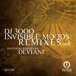 Invisible Moods (remixes Part 1)