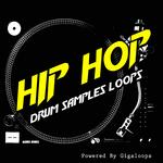 GIGALOOPS - Hip Hop Drum Loops (Sample Pack WAV/REX) (Front Cover)