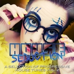 House Seduction Vol 2 (A Selection Of Progressive House Tunes)
