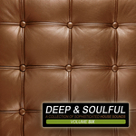 VARIOUS - Deep & Soulful Vol 6 (A Collection Of Sophisticated House Sounds) (Front Cover)