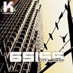6SISS - City Birds EP (Front Cover)
