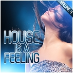 House Is A Feeling Vol 4